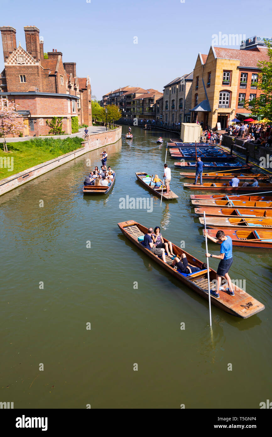 Punters at Scudamore's Quay on the River Cam, University town of Cambridge, Cambridgeshire, England - Stock Image