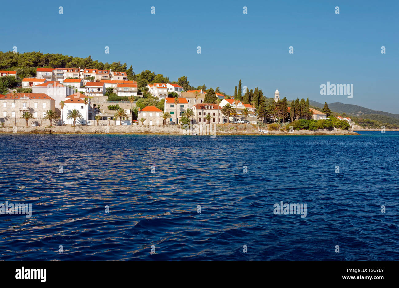 15th century city viewed from water; stone buildings, red roofs, Adriatic Sea; Korcula Town; Croatia; Europe; summer, horizontal - Stock Image