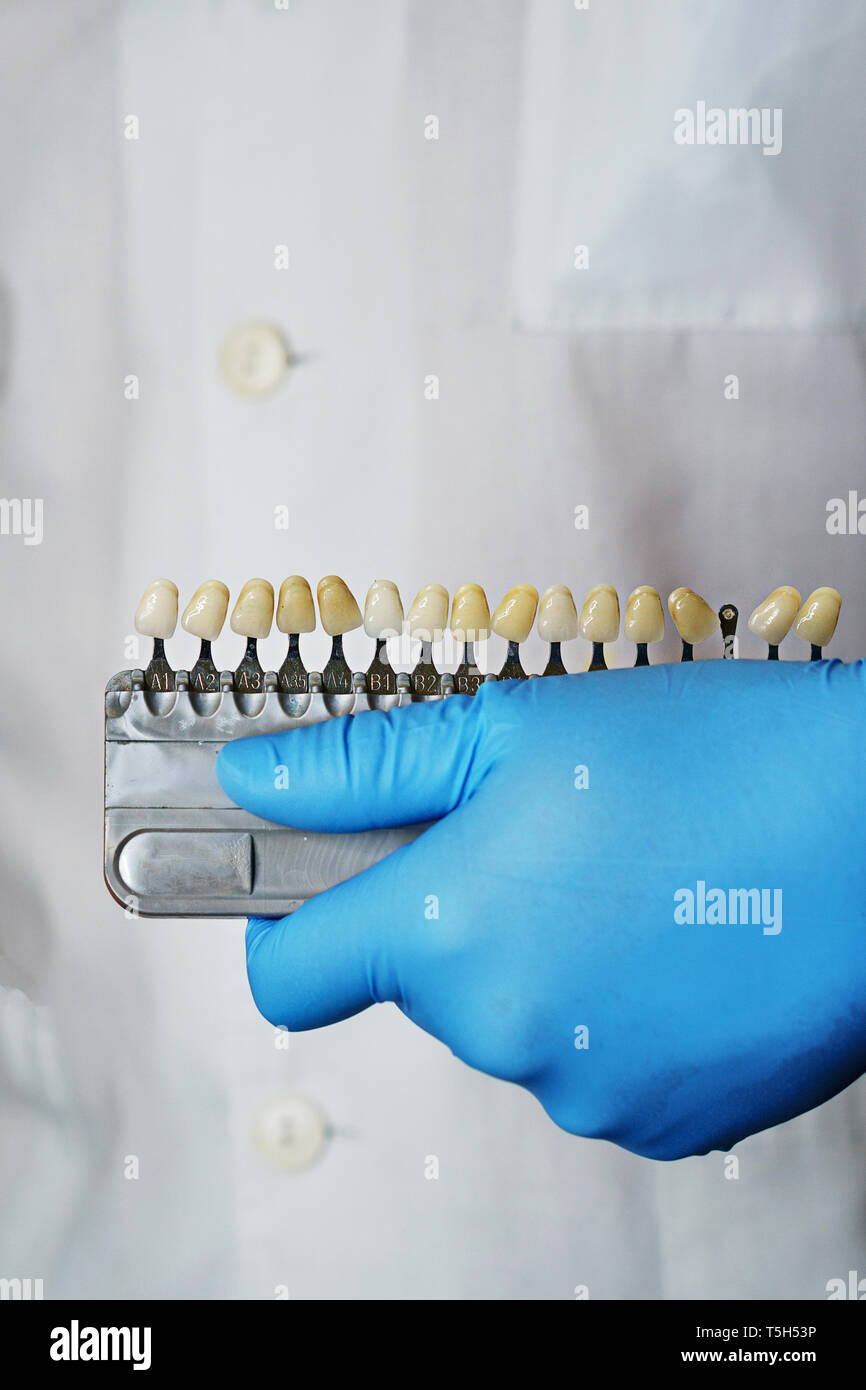 Dentist is holding comparative scale for teeth whitening and selection of shade of crowns. - Stock Image