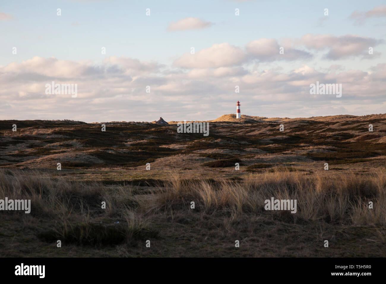 Germany, Sylt, Schleswig Holstein Wadden Sea National Park, dune landscape, Ellenbogen, lighthouse List Ost - Stock Image