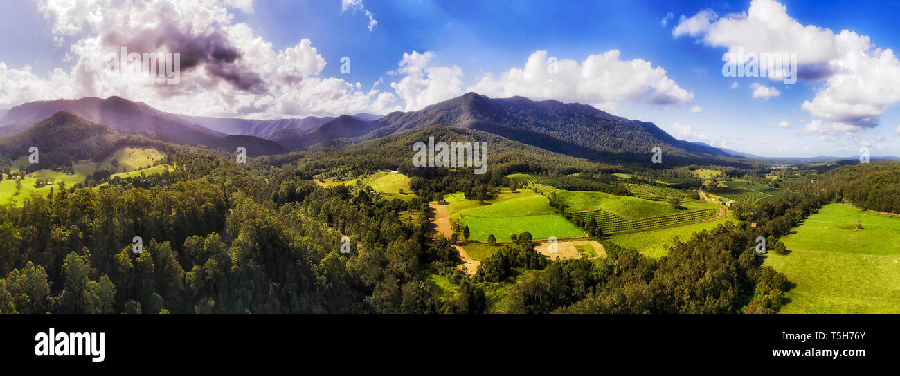 Dorrigo National park and mountain ranges over Bellinger river and surrounding valley with green vegetation farms producing fruits and nuts - elevated - Stock Image
