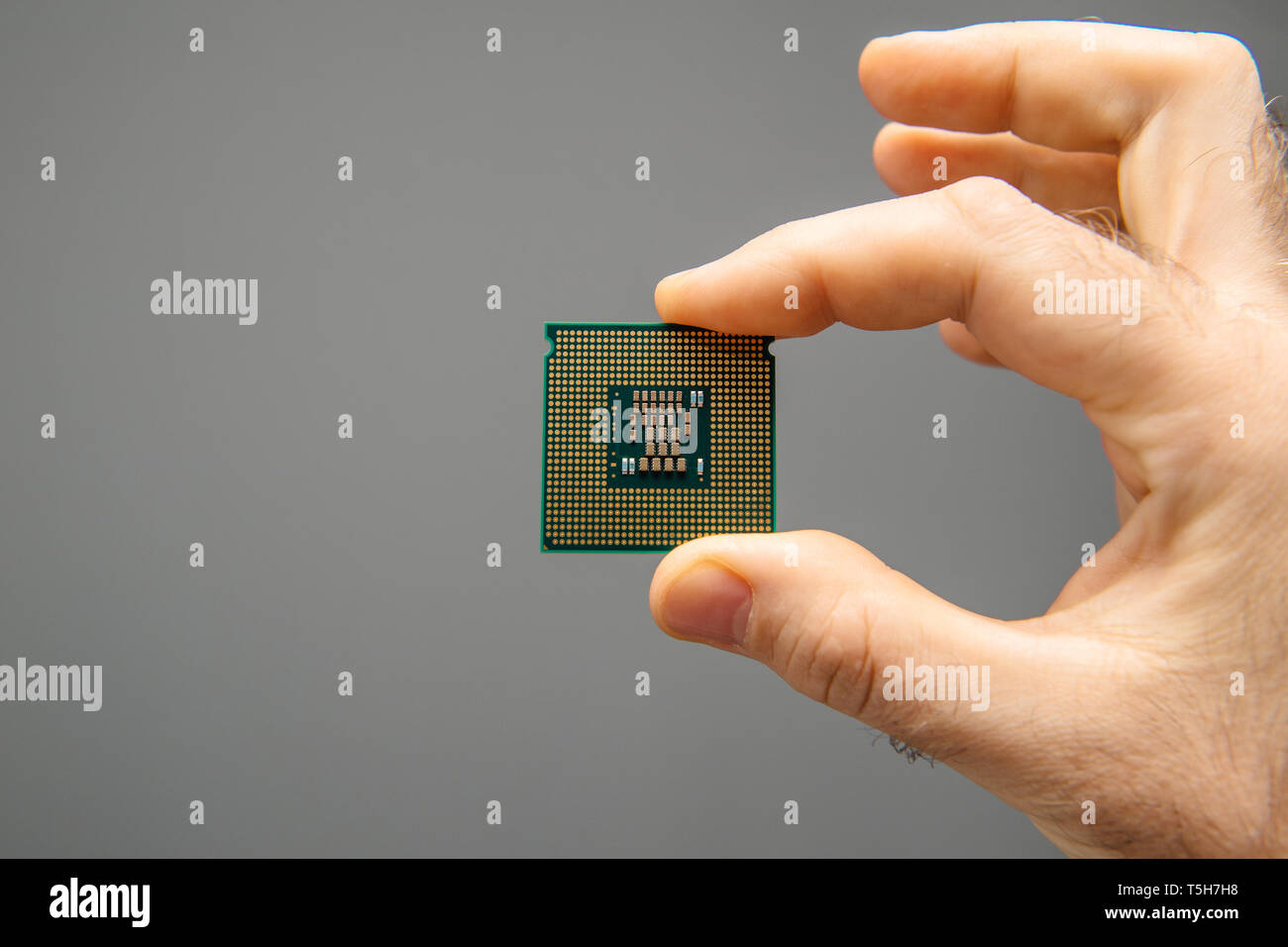 Male hand holding new powerful CPU Central processing unit with high core count and elevated frequency - isolated on gray office background - Stock Image