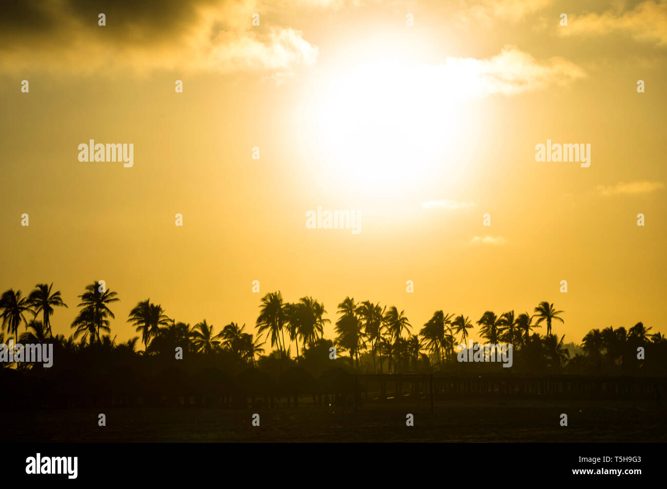 Back lit Sunset in Tabasco Mexico. - Stock Image