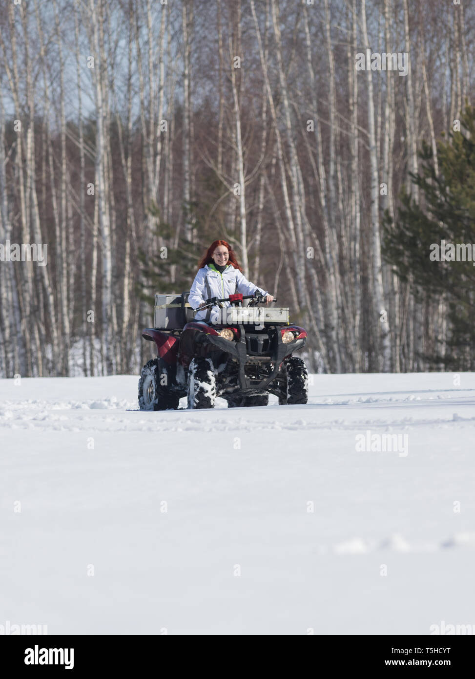 A winter forest. A woman with ginger hair in jacket riding snowmobile - Stock Image