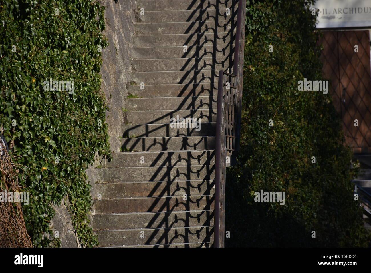 Stiege, Treppe, Stufen, Geländer, Freiluft, Schmiedeeisen, Beton, Stein, verwachsen, Buch, Kletterpflanze, Strauch, Park, Schlosspark, Ambras, Schloss - Stock Image