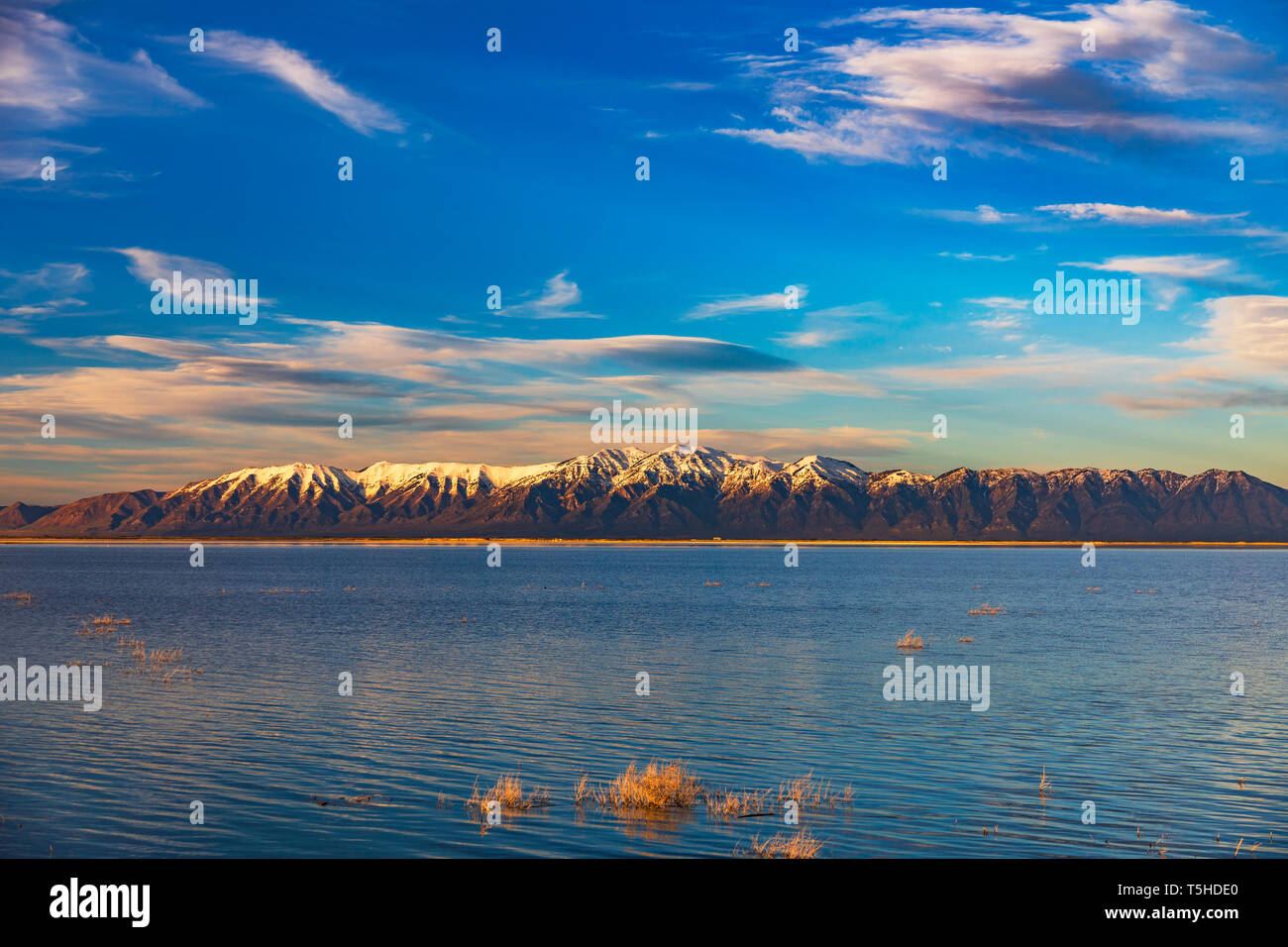 This is a late-afternoon scenic view of the large pond in Unit 2 at the Bear River Migratory Bird Refuge near Brigham City, Utah, USA. - Stock Image