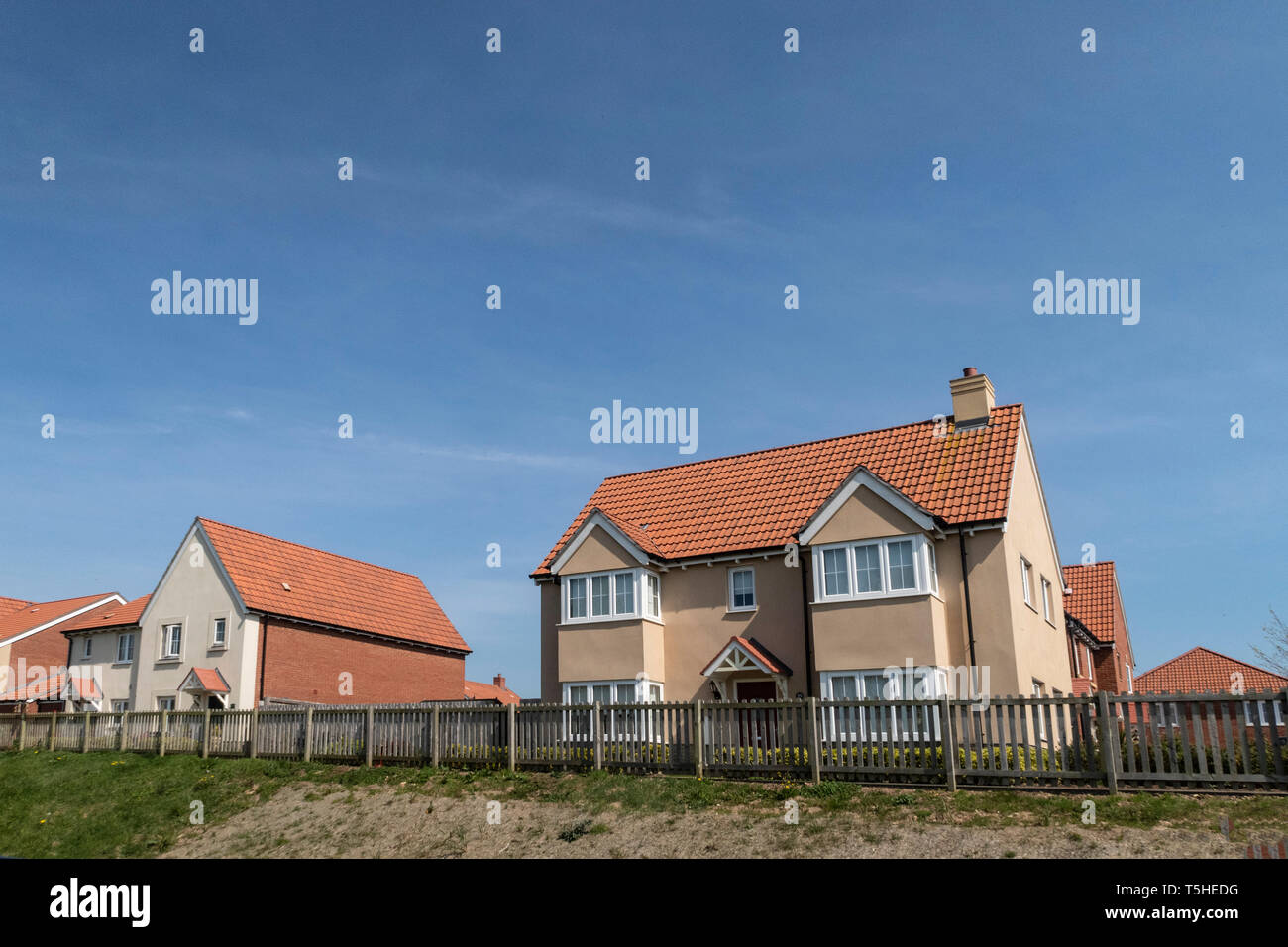 Houses built elevated above the fringes of Seaton Wetlands, Devon, UK. Stock Photo