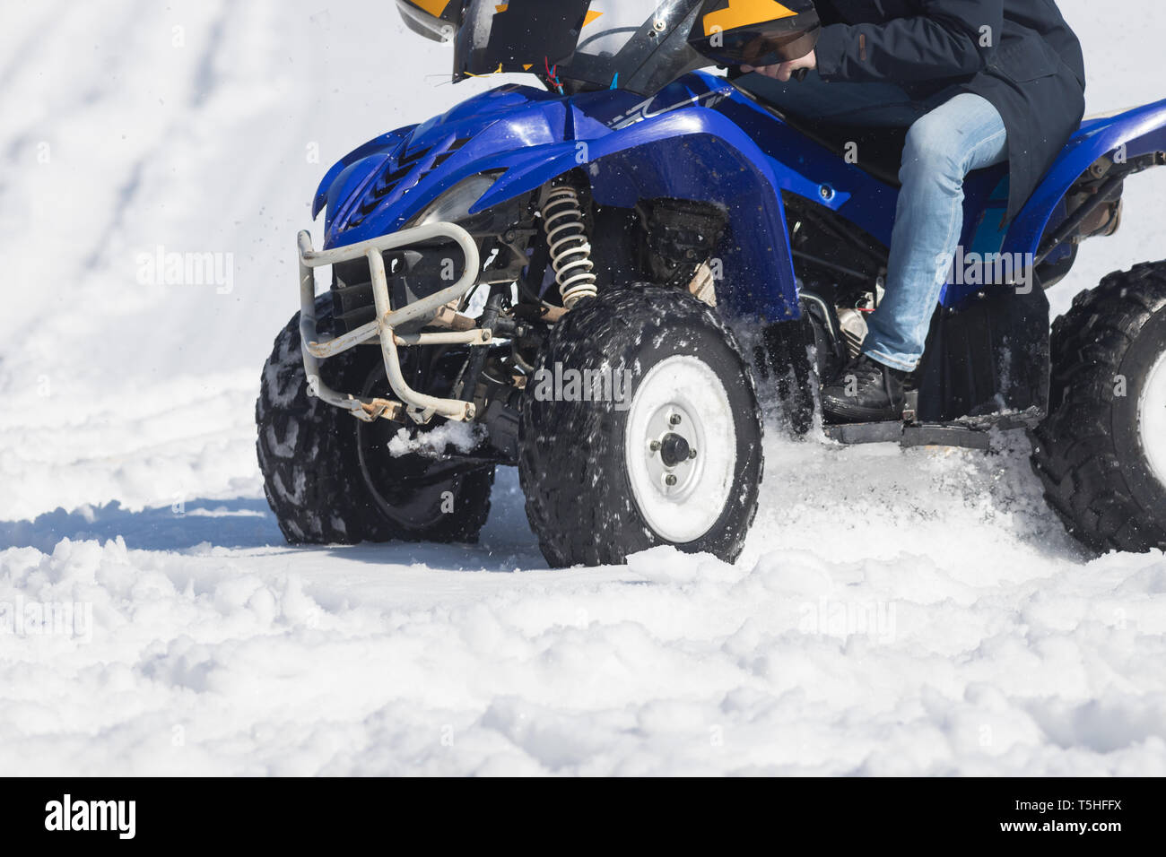 A winter forest. A young woman riding a blue snowmobile - Stock Image