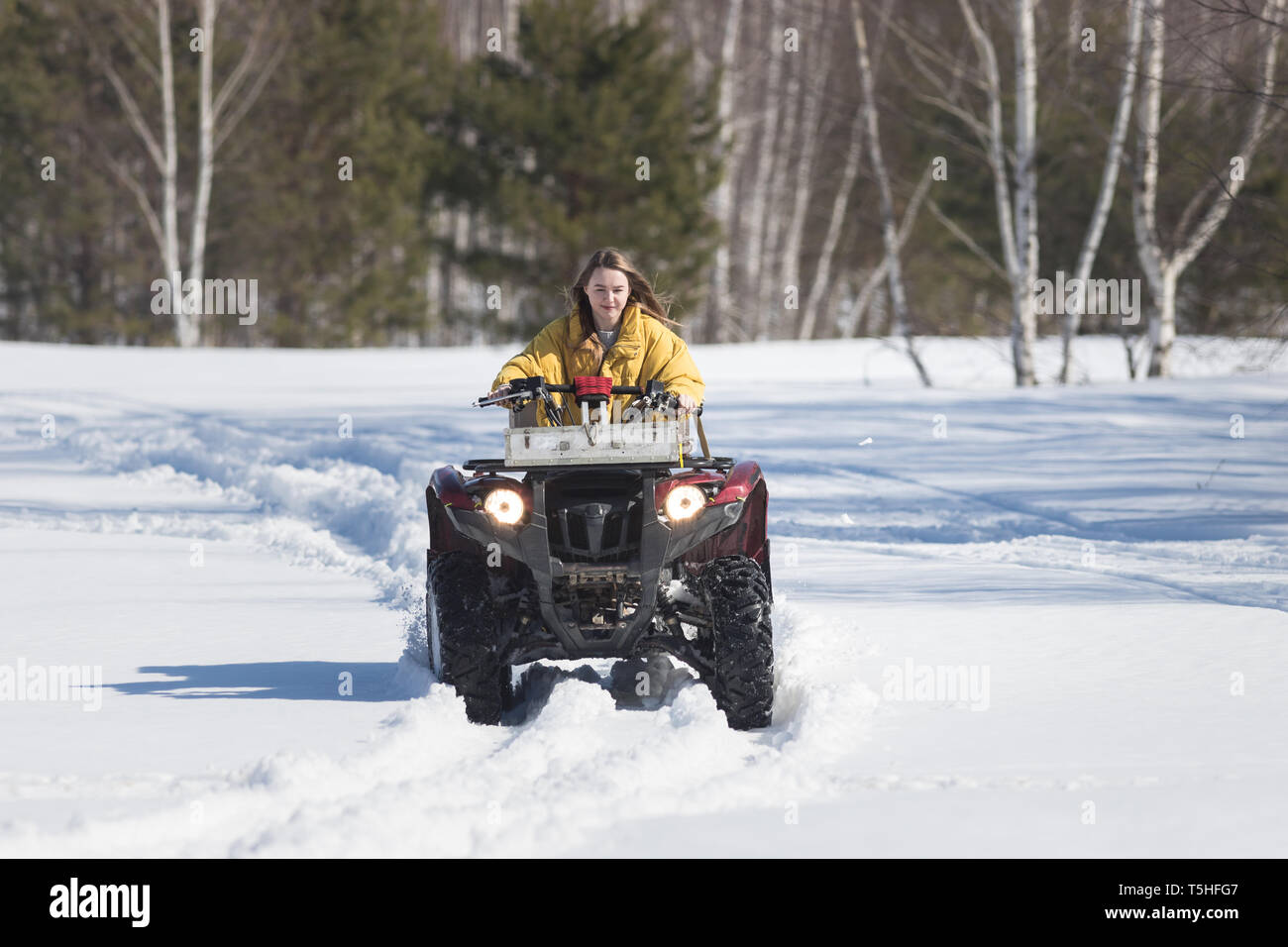 A winter forest. A young woman in yellow jacket riding snowmobile - Stock Image