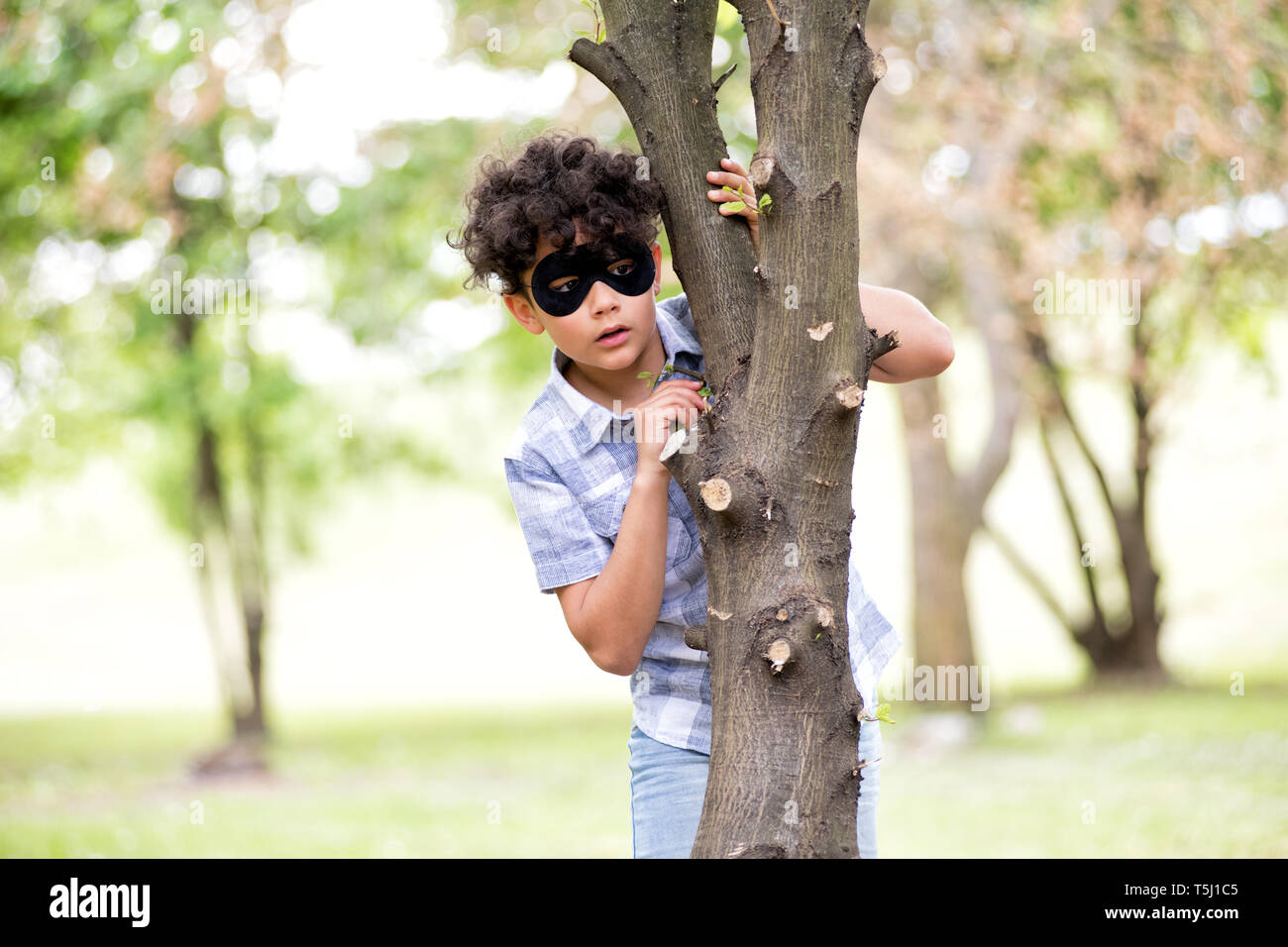 Young boy wearing a black mask standing in a tree hide in a park peering around the trunk watching intently with an absorbed expression - Stock Image