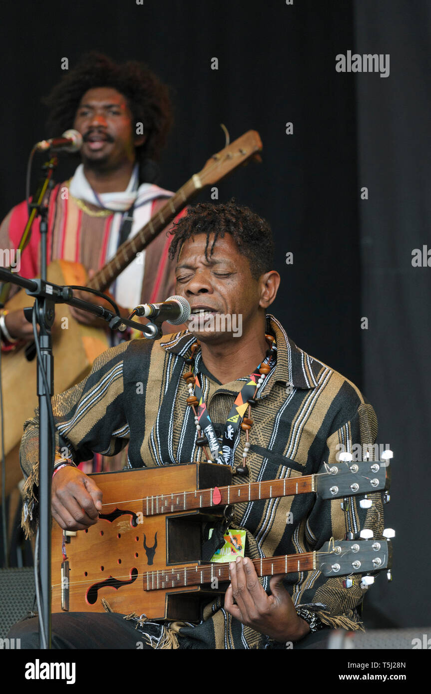 Maurice Razanakoto playing the kabosy with Justin Vali and the NY Malagasy Orkestra at the Womad Festival, Charlton Park, UK, July 27, 2014. - Stock Image