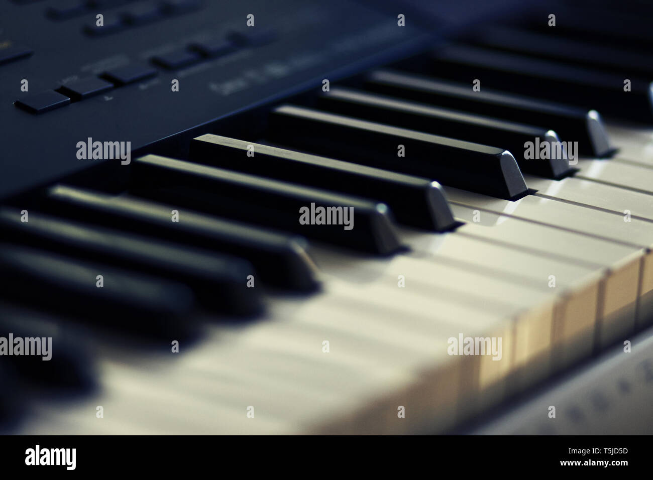 Black and white keys of modern musical instrument-synthesizer, with which you can play different melodies - Stock Image