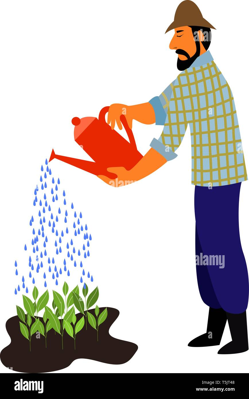 Bearded Man Watering Plant Vector Illustration Royalty Free Cliparts,  Vectors, And Stock Illustration. Image 70859993.