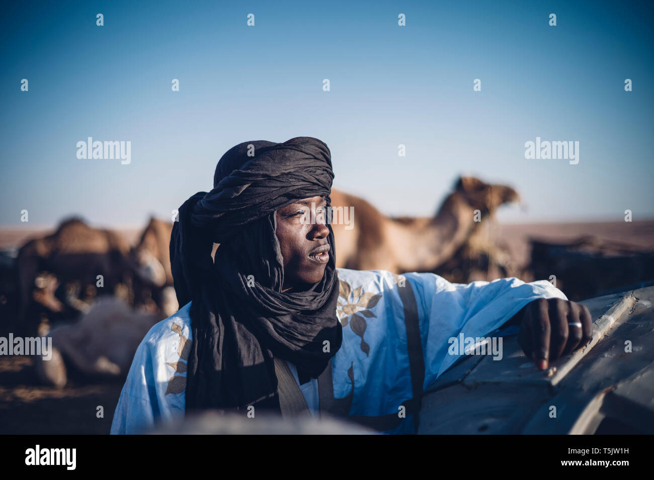 North Africa, Western Sahara, - Stock Image