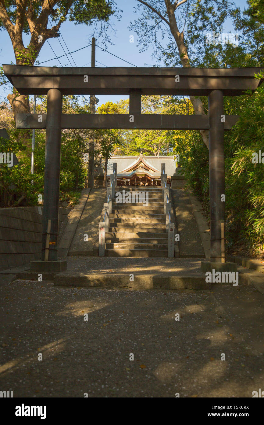 Torii gate is placed before final steps leading to the shrine ground at the Maginu shrine, Kawasaki, Kanagawa prefecture, Japan. - Stock Image