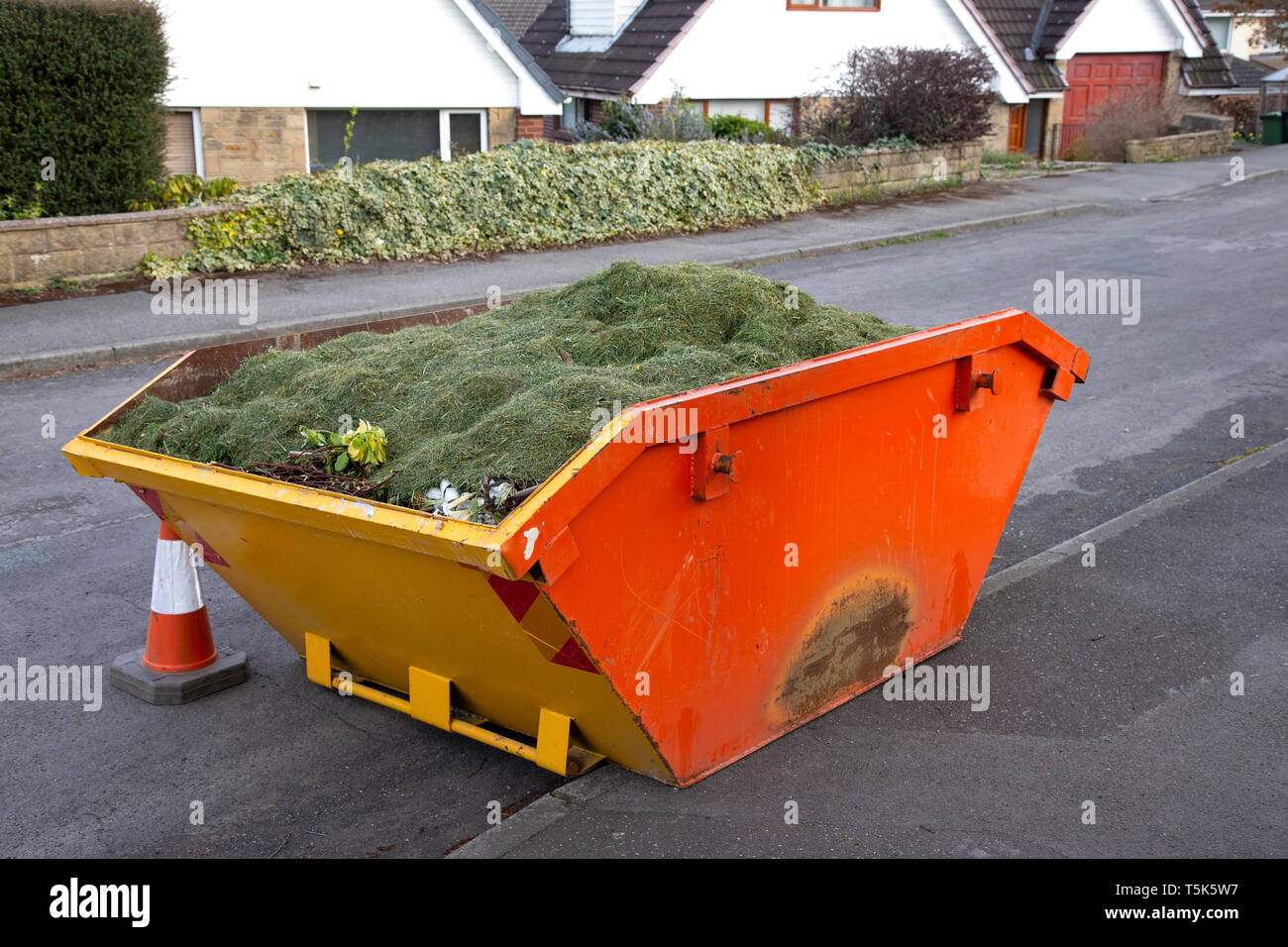 View of a skip on a public road filled with garden rubbish - Stock Image