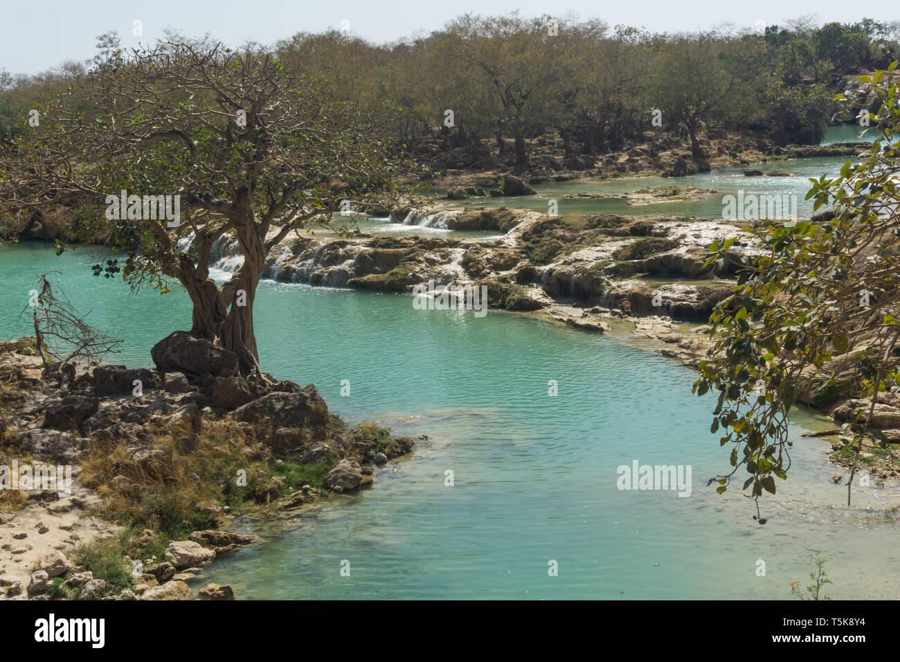 Wadi Darbat, Dhorfar region, Oman Stock Photo