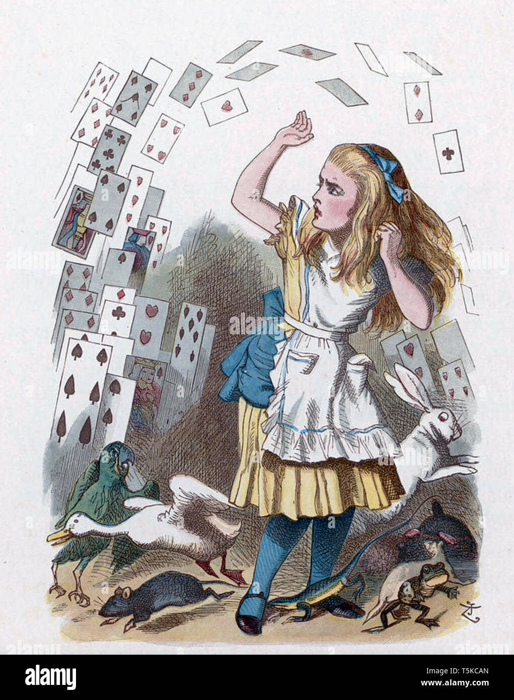 ALICE'S ADVENTURES IN WONDERLAND In Chapter 14 Alice encounters a shower of cards - Stock Image