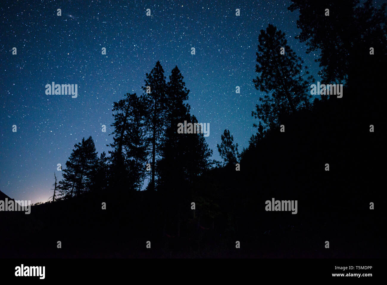 Blue Sky at Night with Brilliant Stars - Stock Image