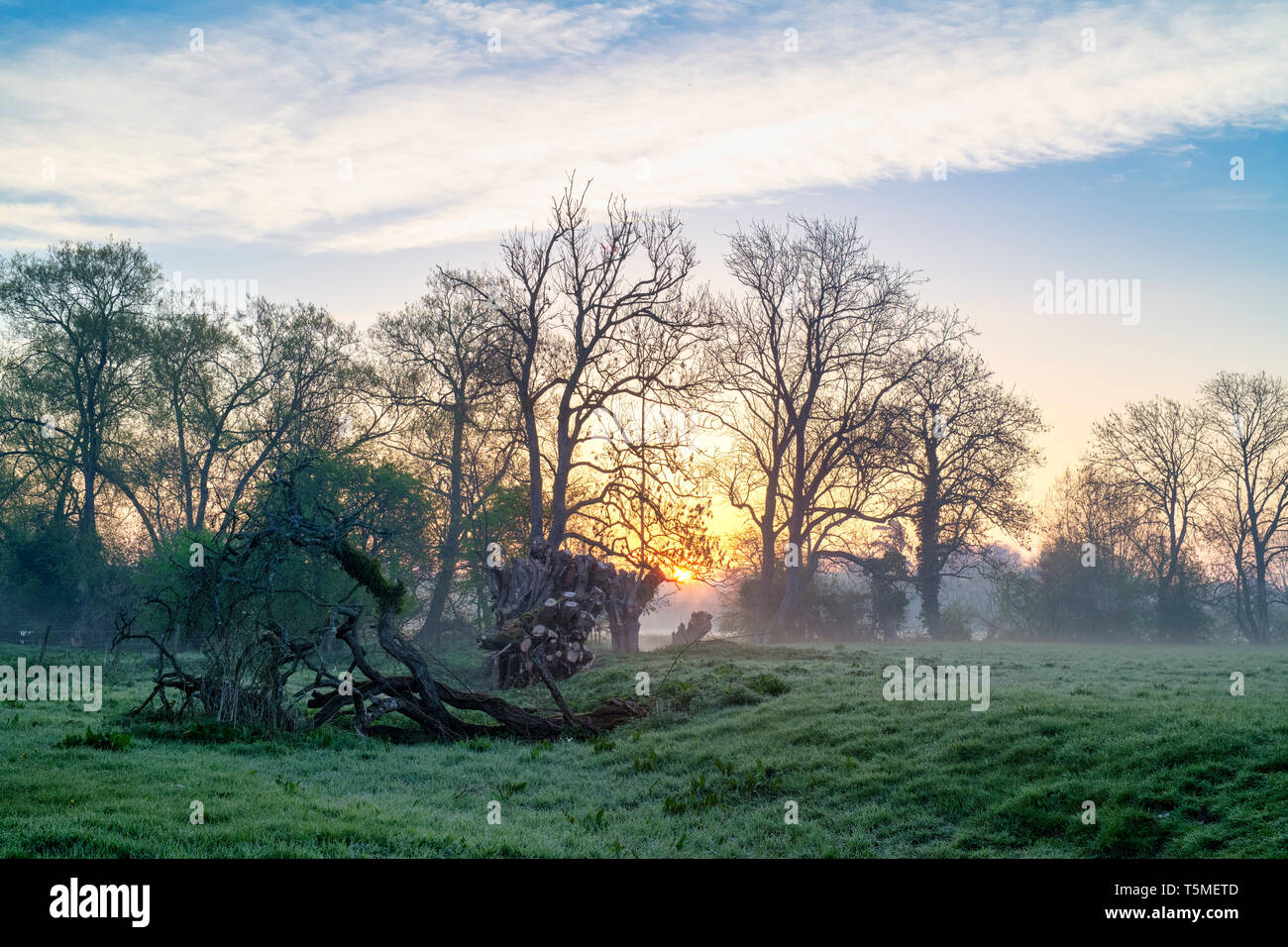 Oxfordshire countryside in the spring at sunrise. Shipton on cherwell, Oxfordshire, England Stock Photo
