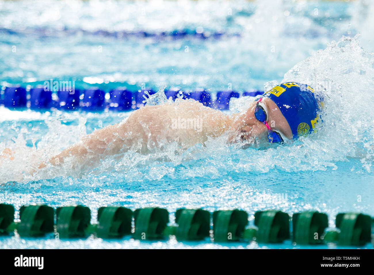 William Ryley (University of Bath) in action during the men's open 1,500 metres freestyle last heat, during Day 3 of the 2019 British Swimming Champio - Stock Image