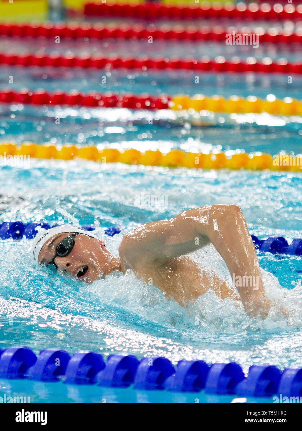 William Bell (City of Leicester) in action during the men's open 1,500 metres freestyle last heat, during Day 3 of the 2019 British Swimming Champions - Stock Image
