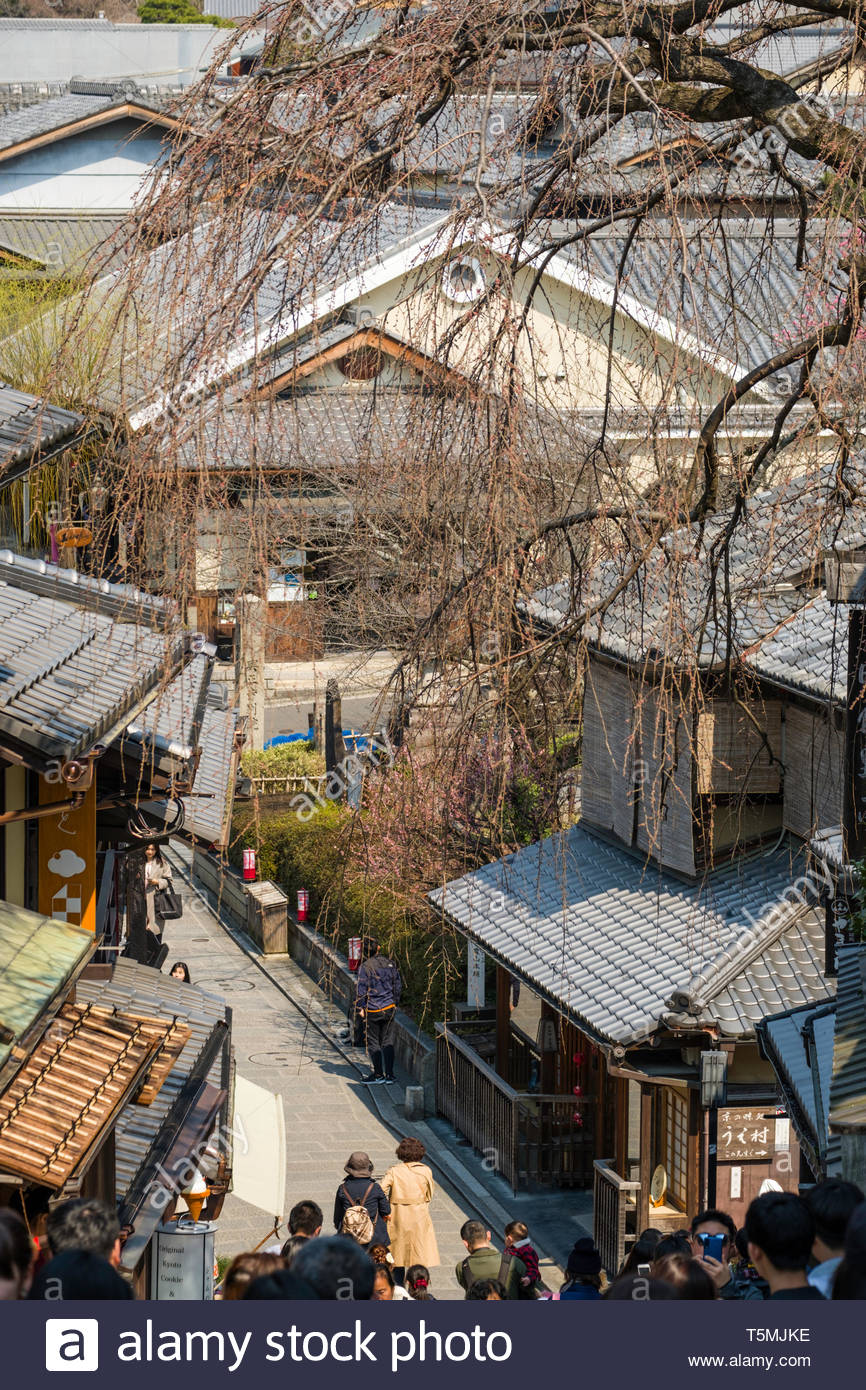 Classic ceramic tiled roofs in the traditional Japanese architectural style seen through the bare branches of a budding cherry tree, Sanneizaka, Kiyom - Stock Image