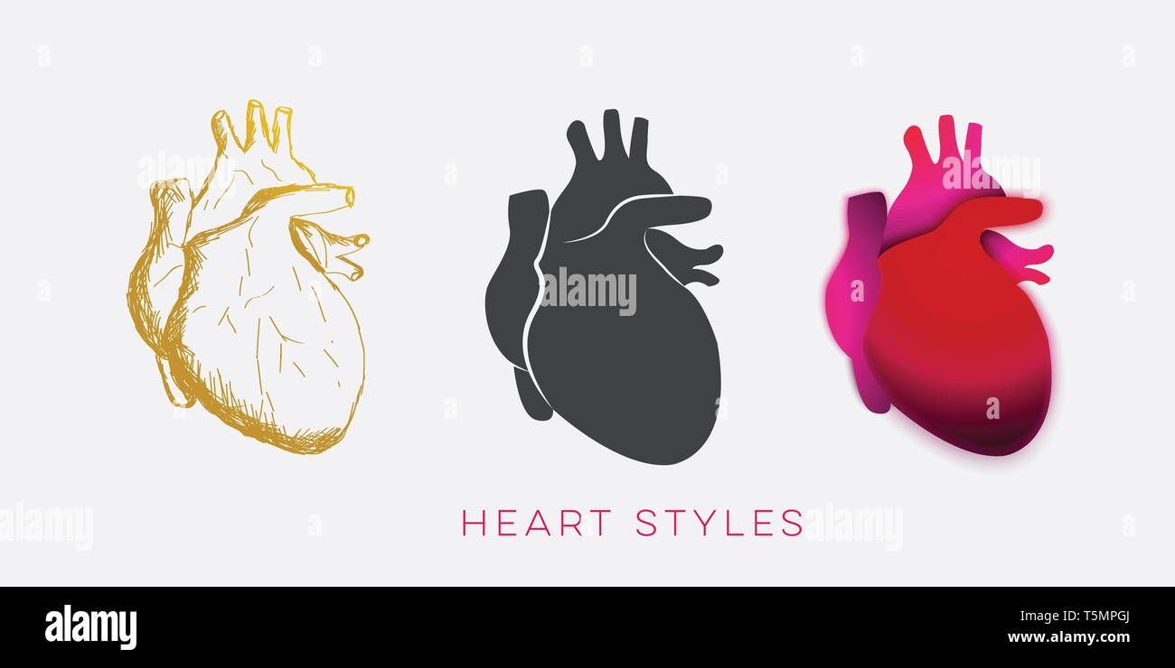 hearth body illustration in three style design vector template - Stock Vector