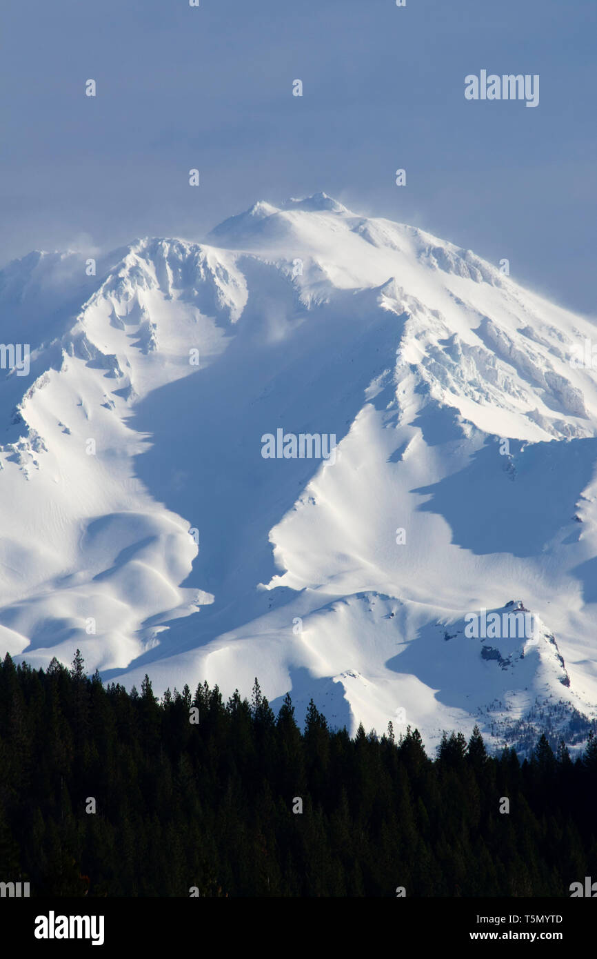 Mount Shasta, Shasta-Trinity National Forest, California - Stock Image