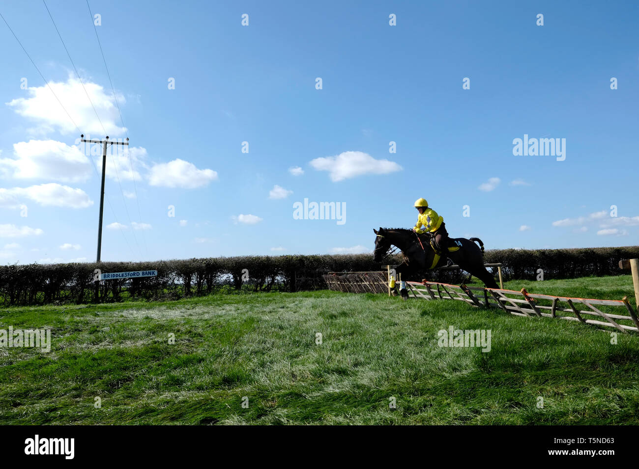 The Isle of Wight Grand National and Ashey Scurry 2019, West Ashey Farm, Ryde, Isle of Wight. Horse racing and spectators around the rural course. Stock Photo