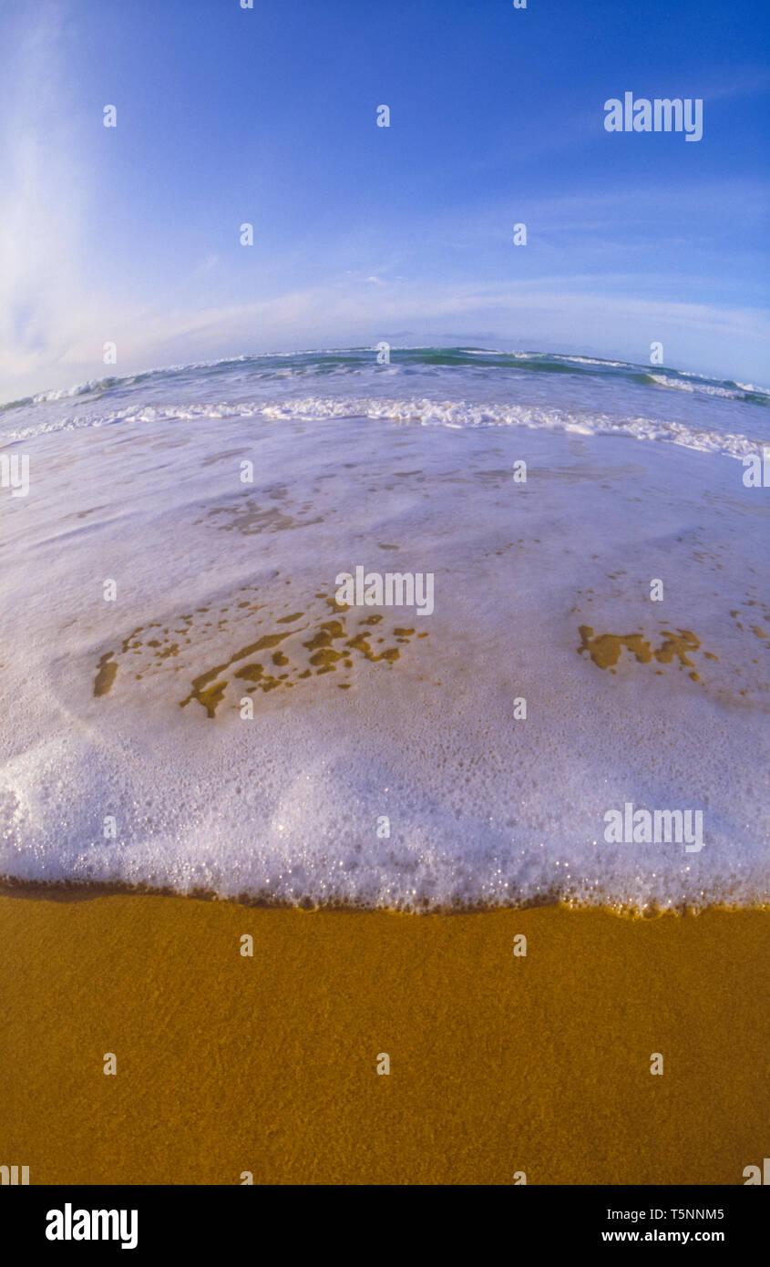Close-up of whitewater on beach, fisheye distortion - Stock Image