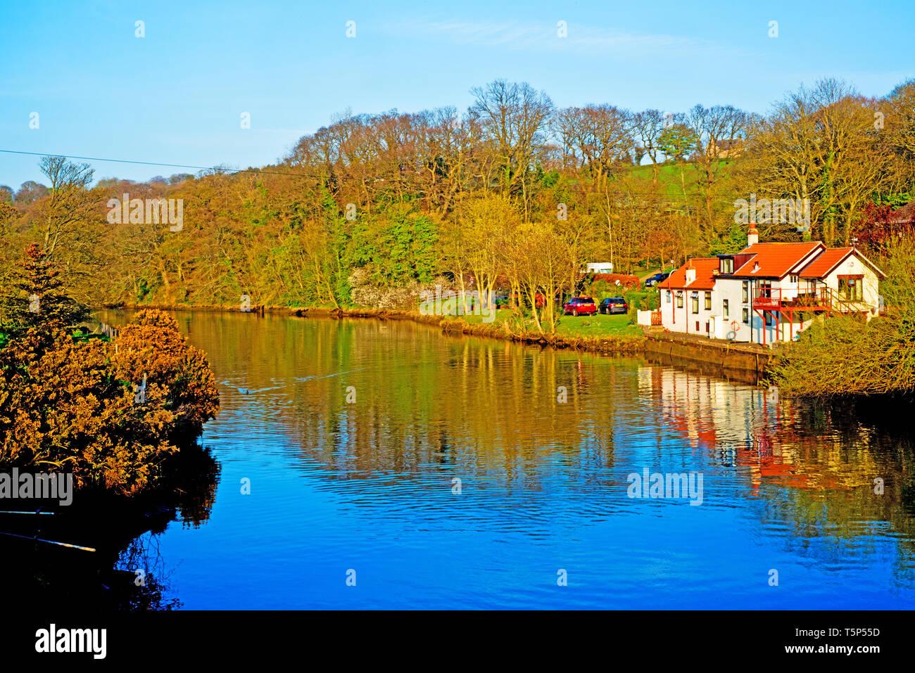 River Esk, Ruswarp, North Yorkshire, England - Stock Image