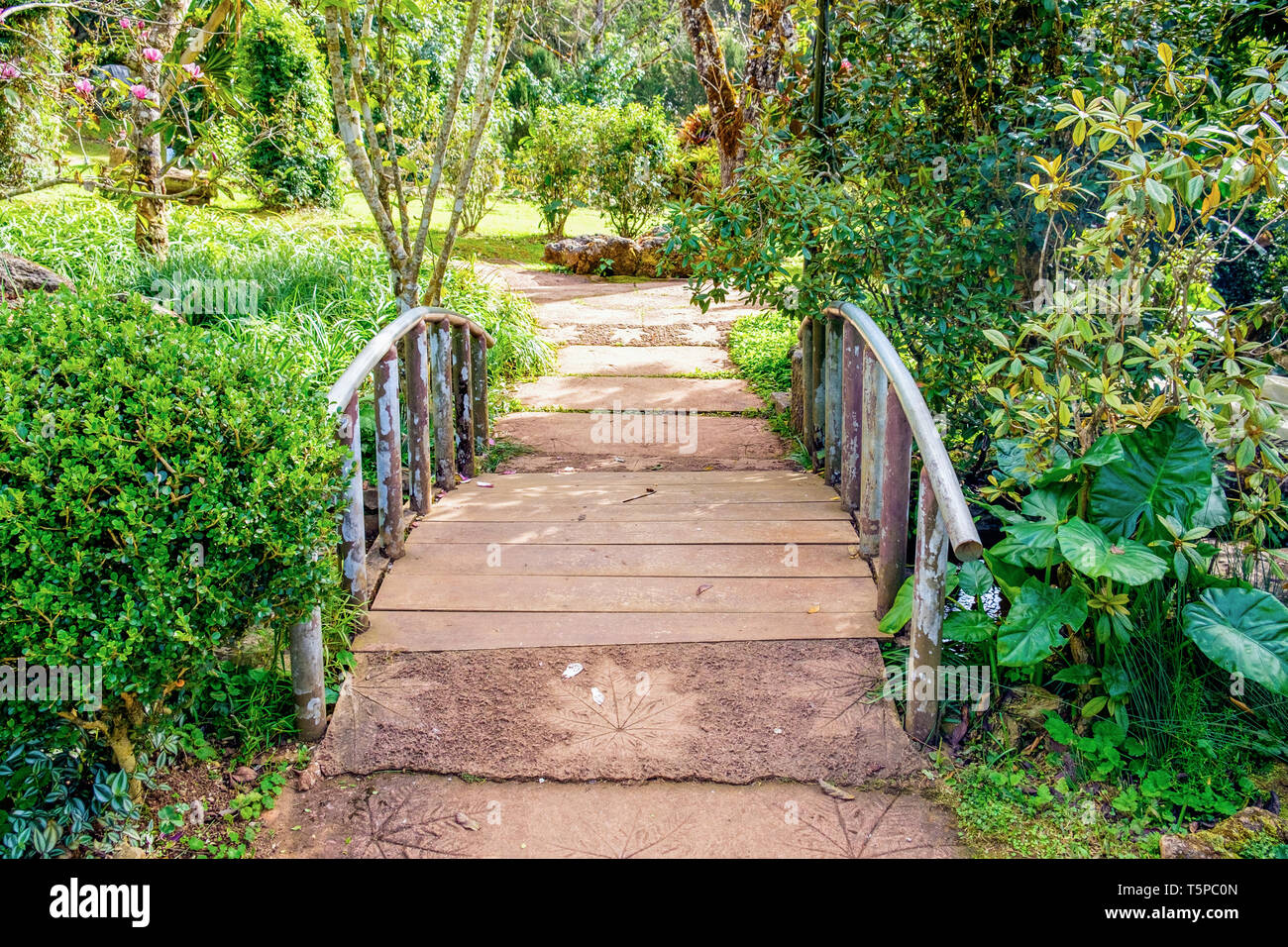 Walkway bridge sylvan in garden - Stock Image