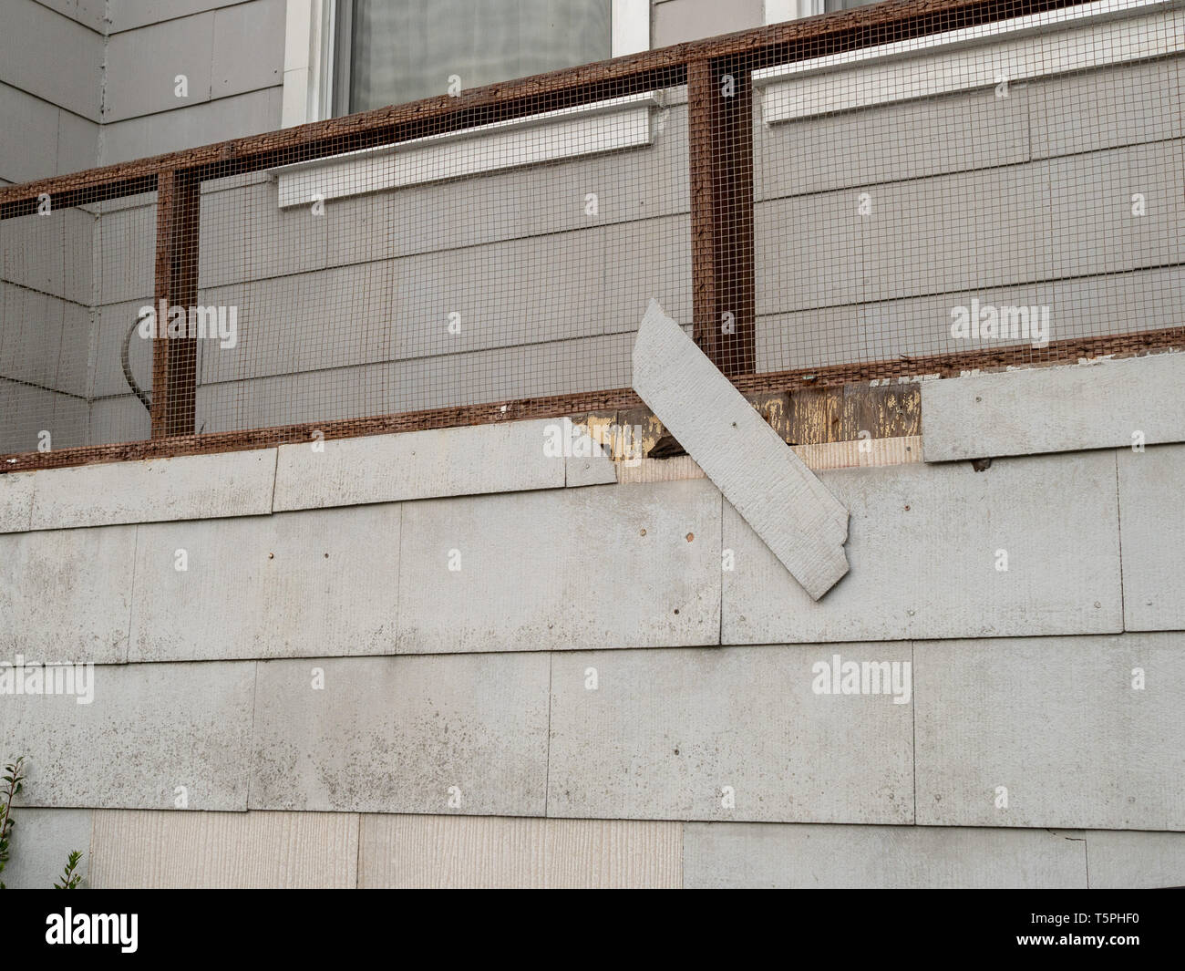 Shingle on exterior wall of house falling off in state of disrepair - Stock Image