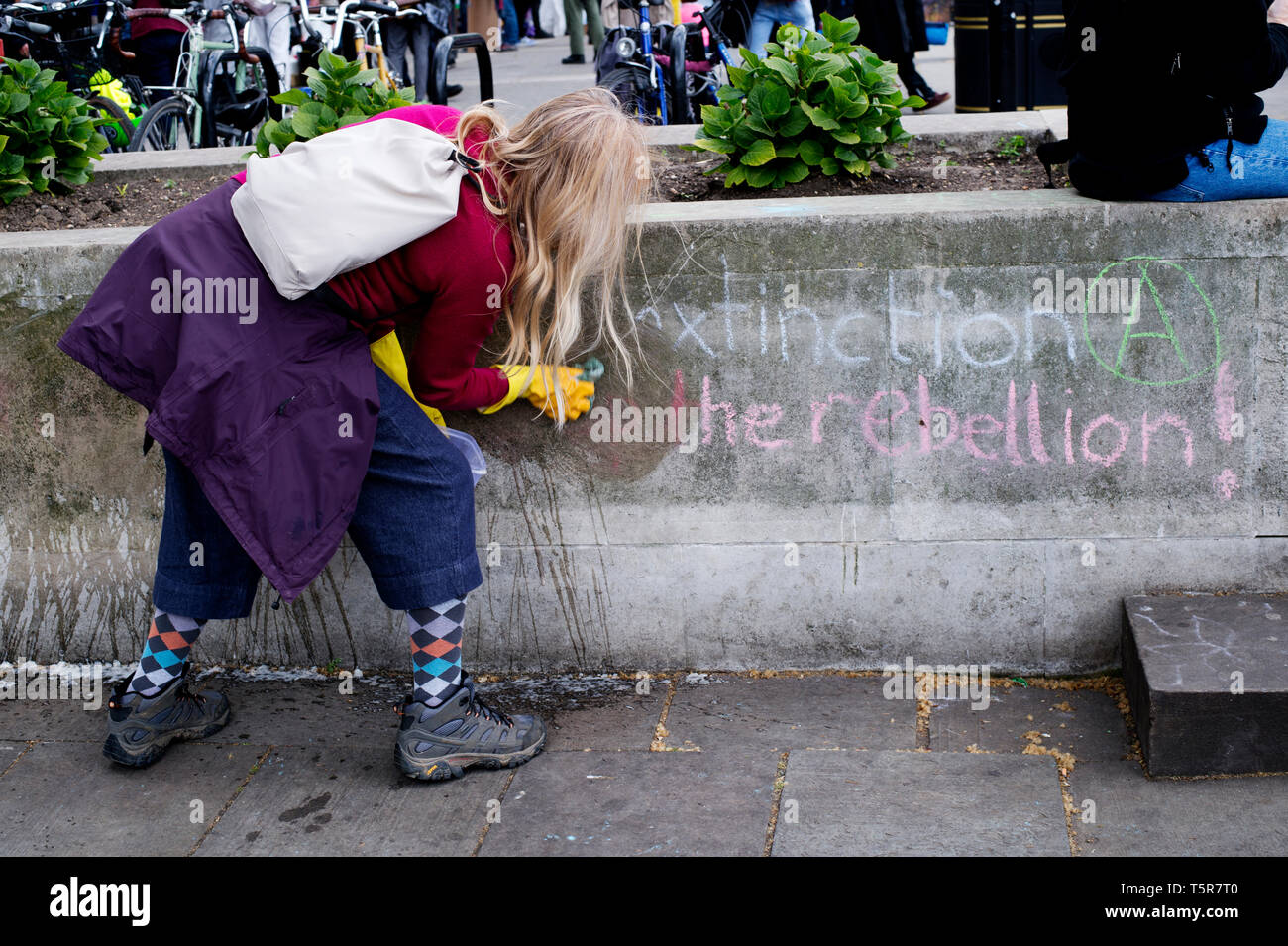 Extinction Rebellion protest, London . April 25th 2019. Marble Arch camp. A rebel cleans off the chalk writing that said 'Extension Rebellion'. - Stock Image