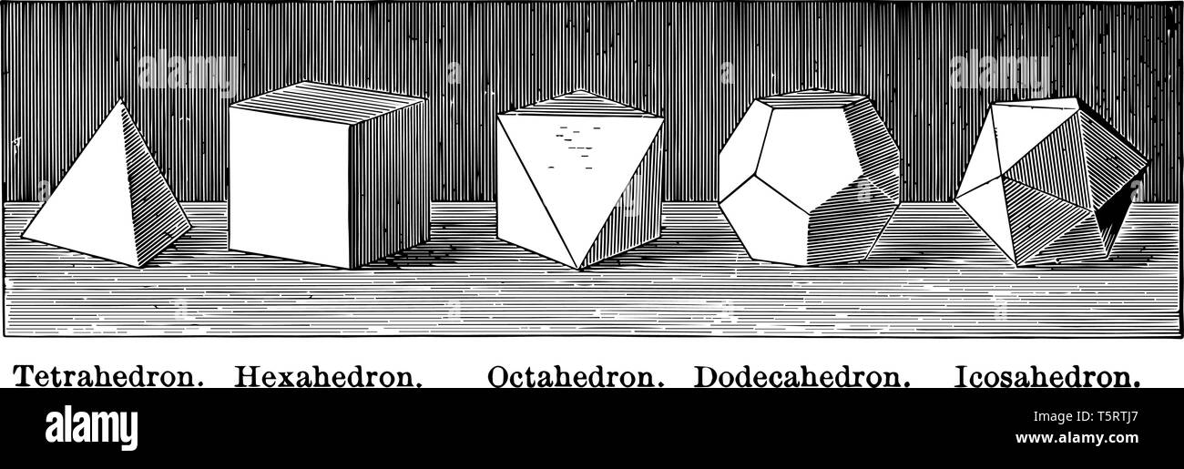 Illustration containing a tetrahedron, hexahedron, octahedron, dodecahedron and icosahedron, placed side by side, vintage line drawing or engraving il - Stock Image