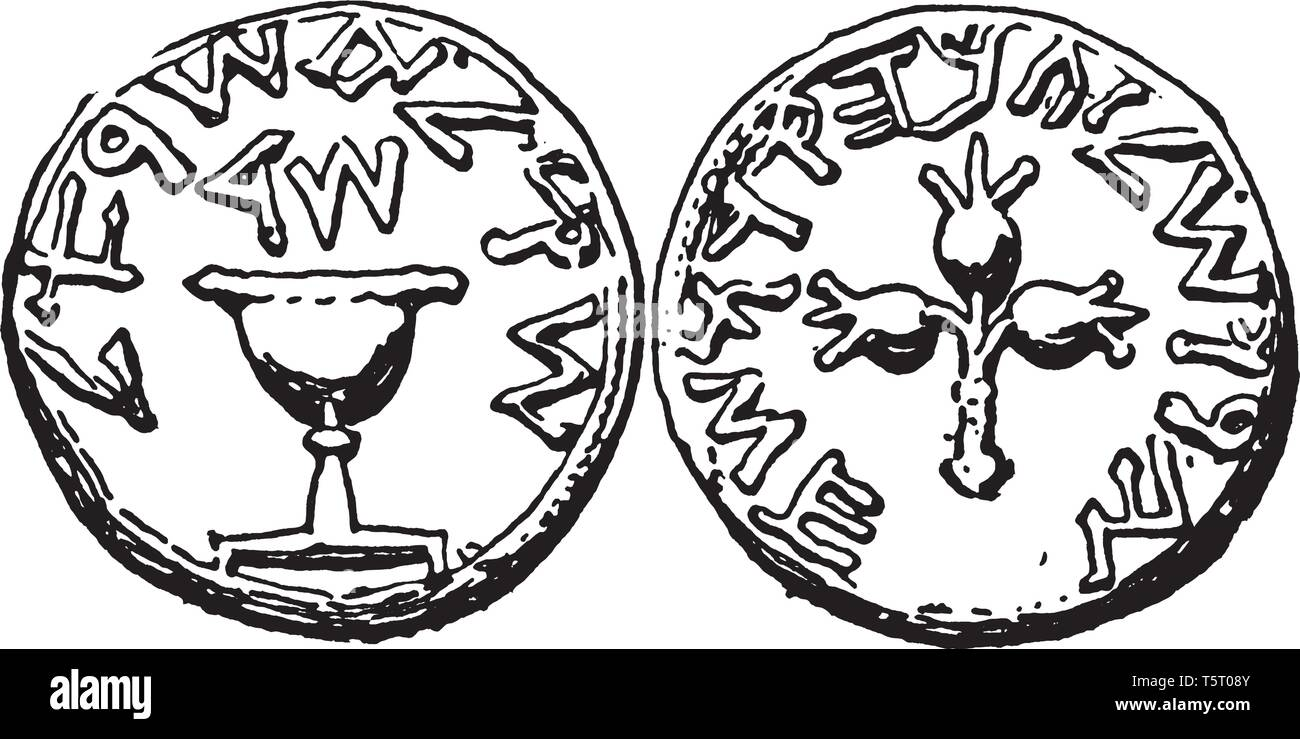 Shekel is the currency of Israel and is also used as a legal tender in the Palestinian territories of the West Bank and the Gaza Strip, vintage line d - Stock Image