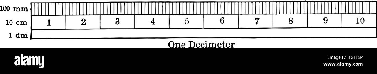 A metric ruler is used to measure centimeter and millimeters, vintage line drawing or engraving illustration. - Stock Vector