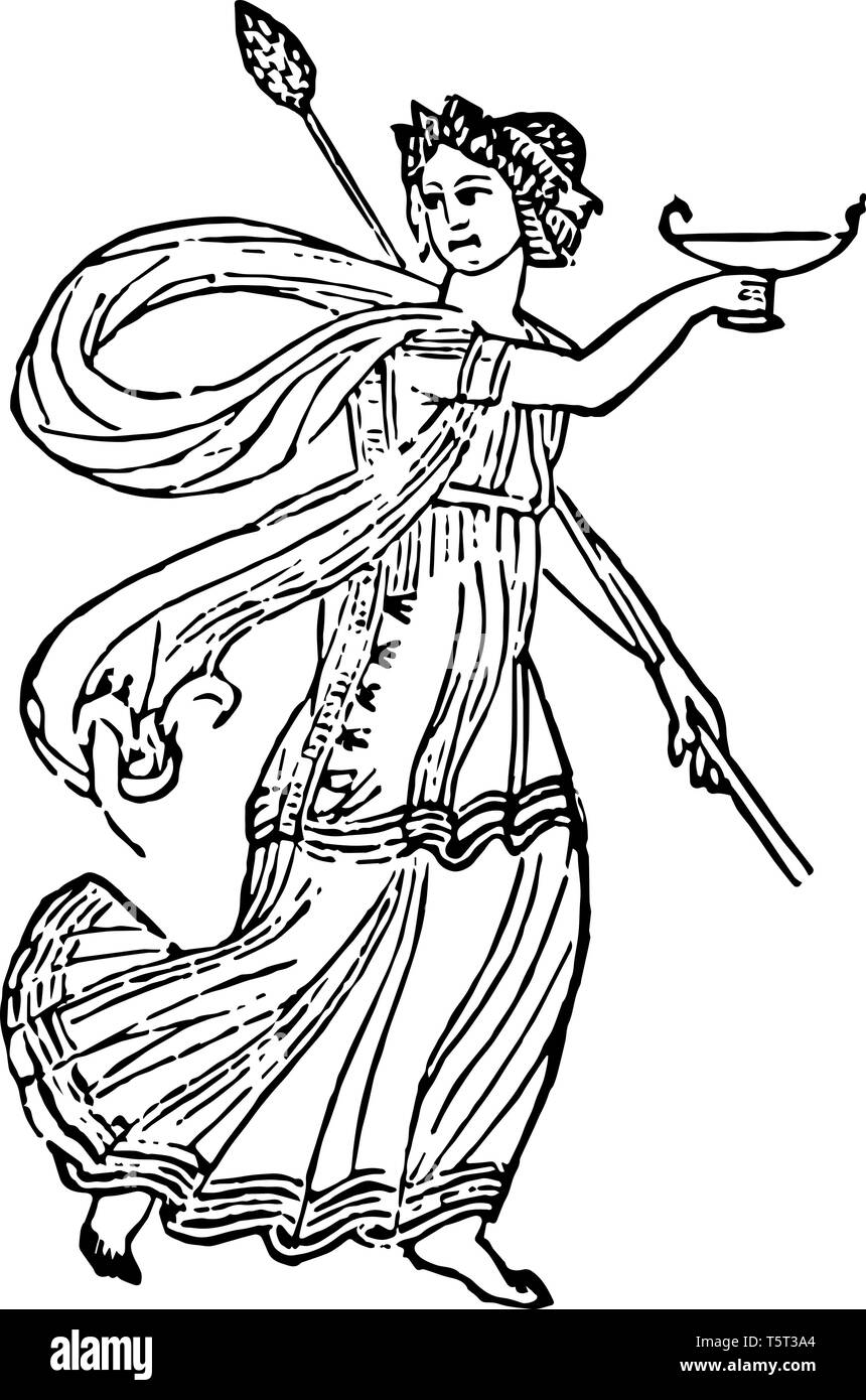 In this image there is Roman Bacchhante. Roman Bacchhante holding a thyrsus and a glass of wine, vintage line drawing or engraving illustration. Stock Vector