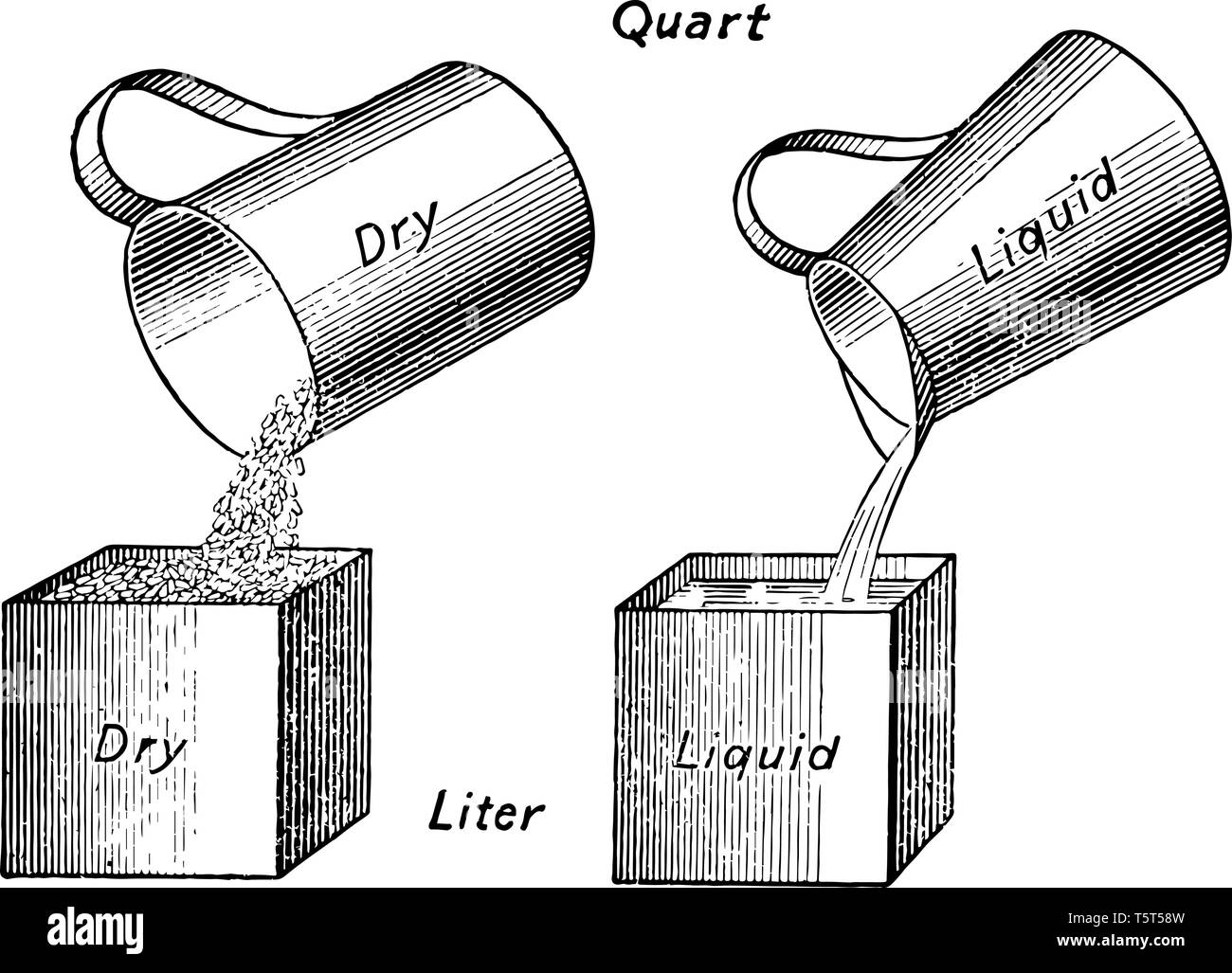 Picture shows the Comparison of Units of Capacity. It is showing the amount of dry grain and liquid containing within the same size of a Bushel, vinta - Stock Vector