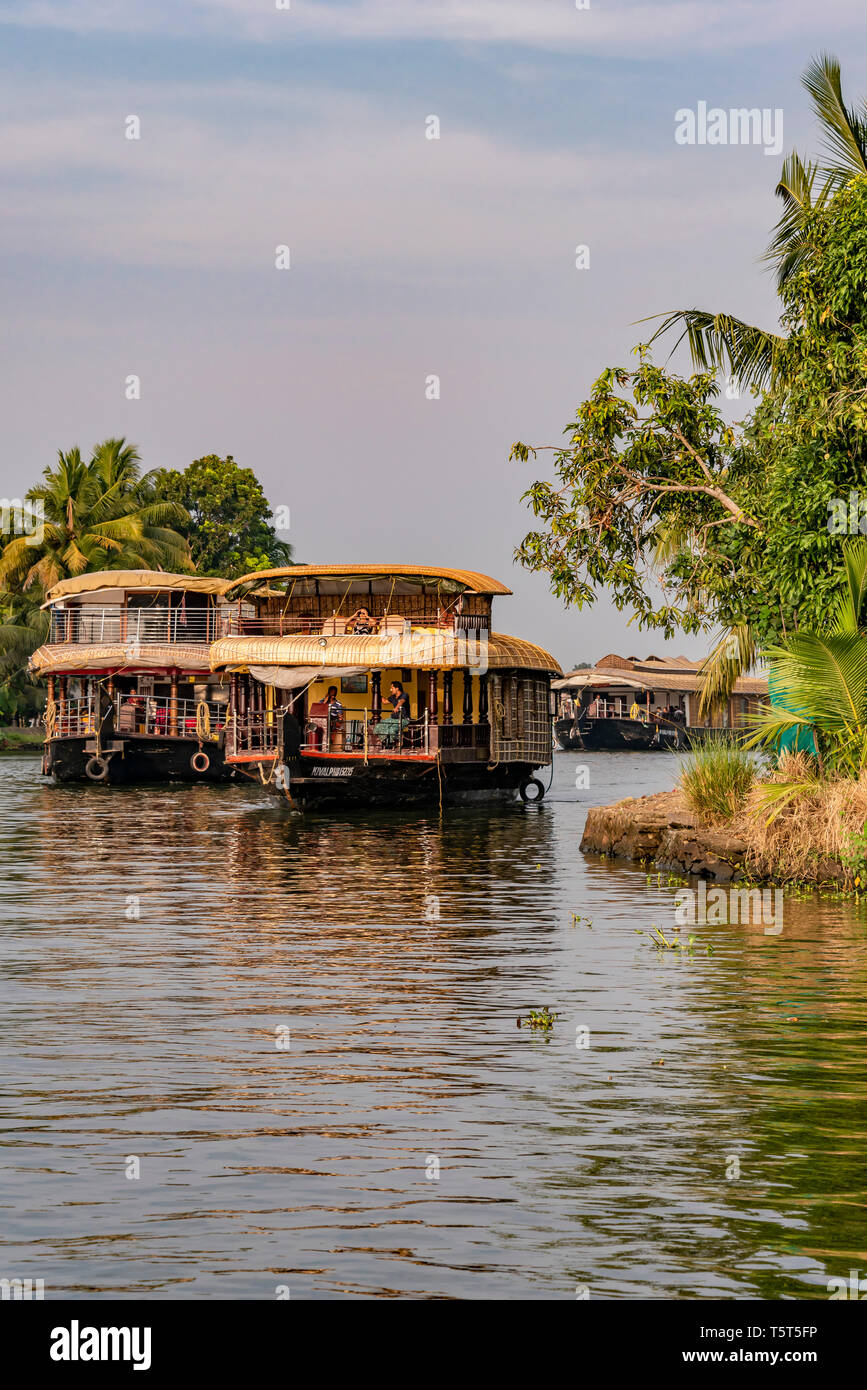 Vertical view of traditional riceboats sailing the backwaters of Kerala, India. Stock Photo