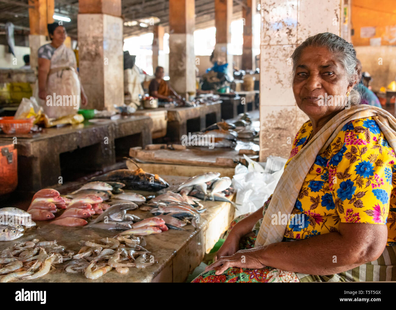 Horizontal portrait of a lady selling fish at the fish market at Palayam in Trivandrum, Kerala, India. - Stock Image