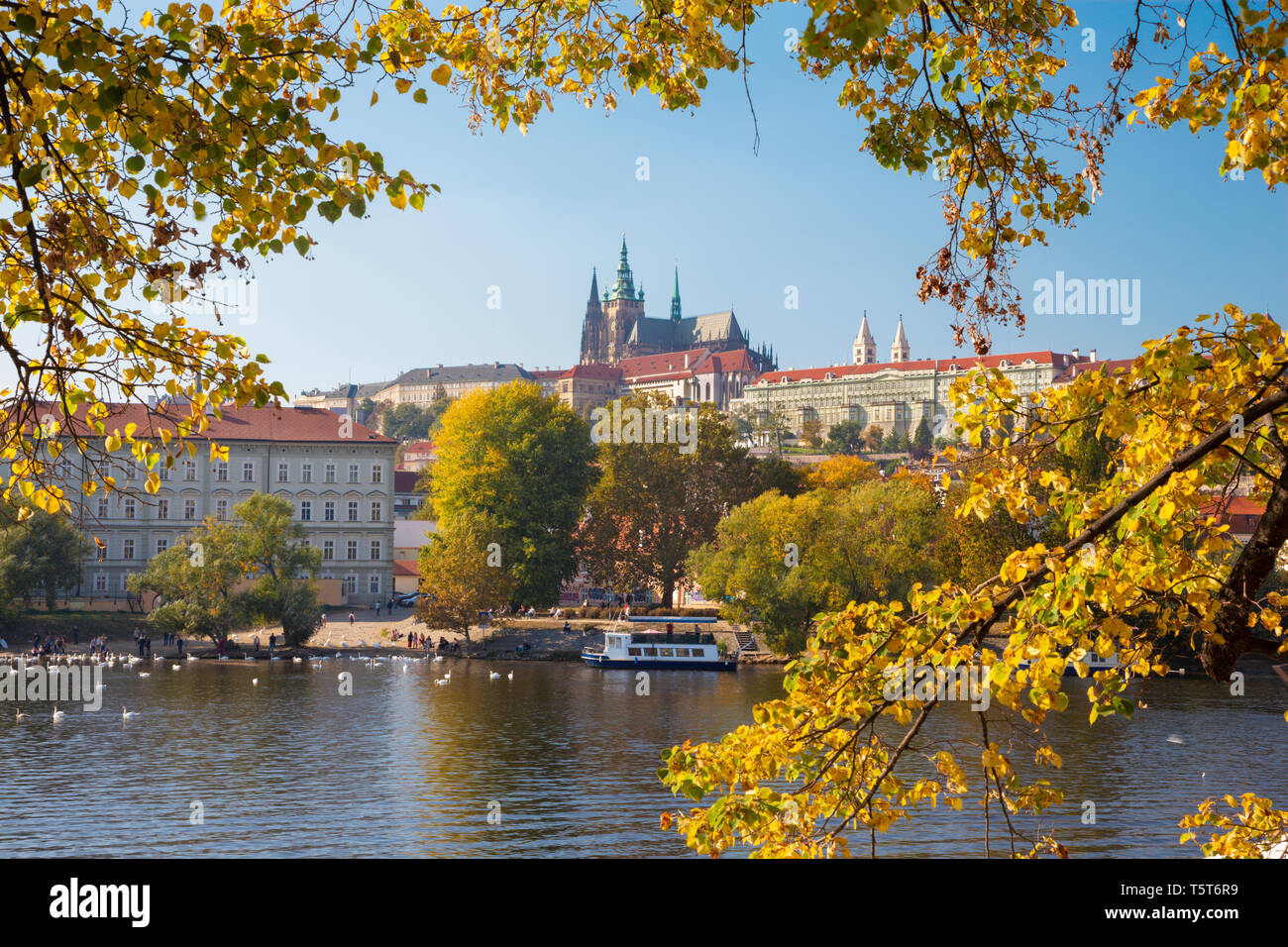 Prague - The Castle and Cathedral withe the Vltava river and the autumn leafs. - Stock Image