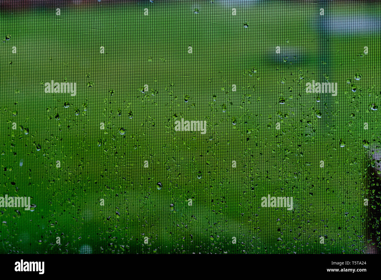 Rain drops create interesting patterns on a window during an otherwise gloomy day. Gray skies and dark days can bring on depression in a lot of people - Stock Image