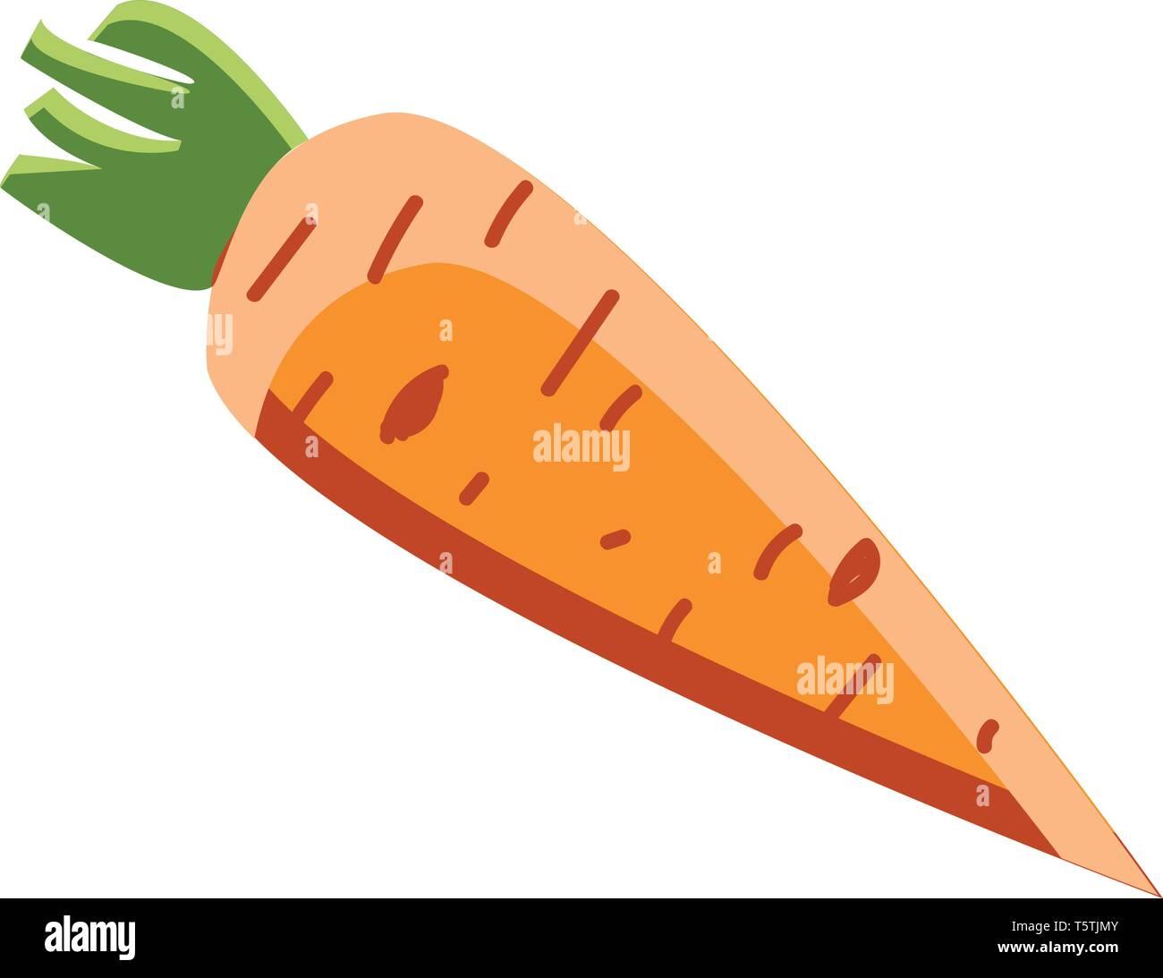 How many Carrots do I need to eat until I turn orange?   Carrot benefits,  Health benefits of carrots, Carrots