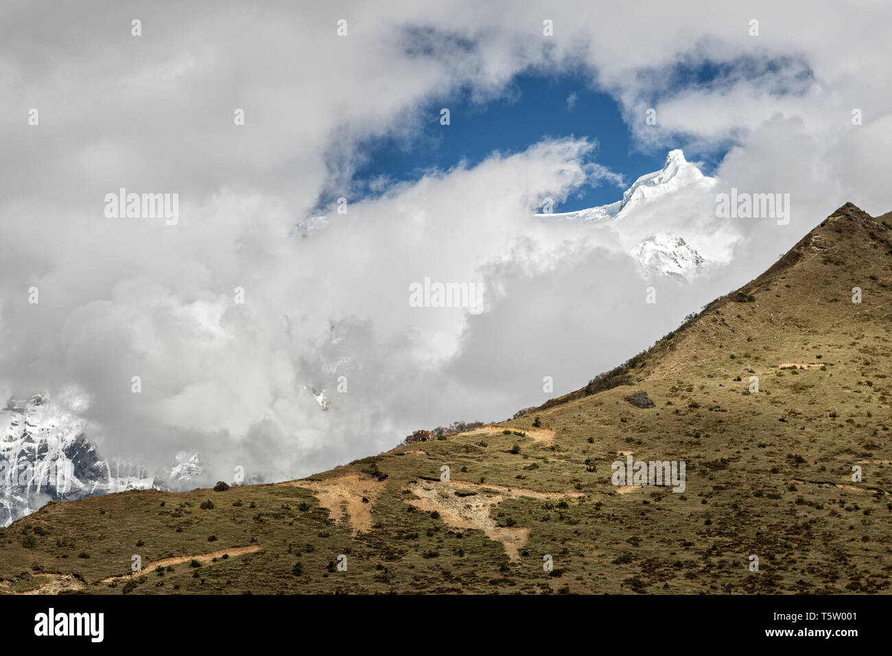 Summit of Table Mountain (Zongophu Kang) from Chozo, Lunana Gewog, Gasa District, Snowman Trek, Bhutan Stock Photo