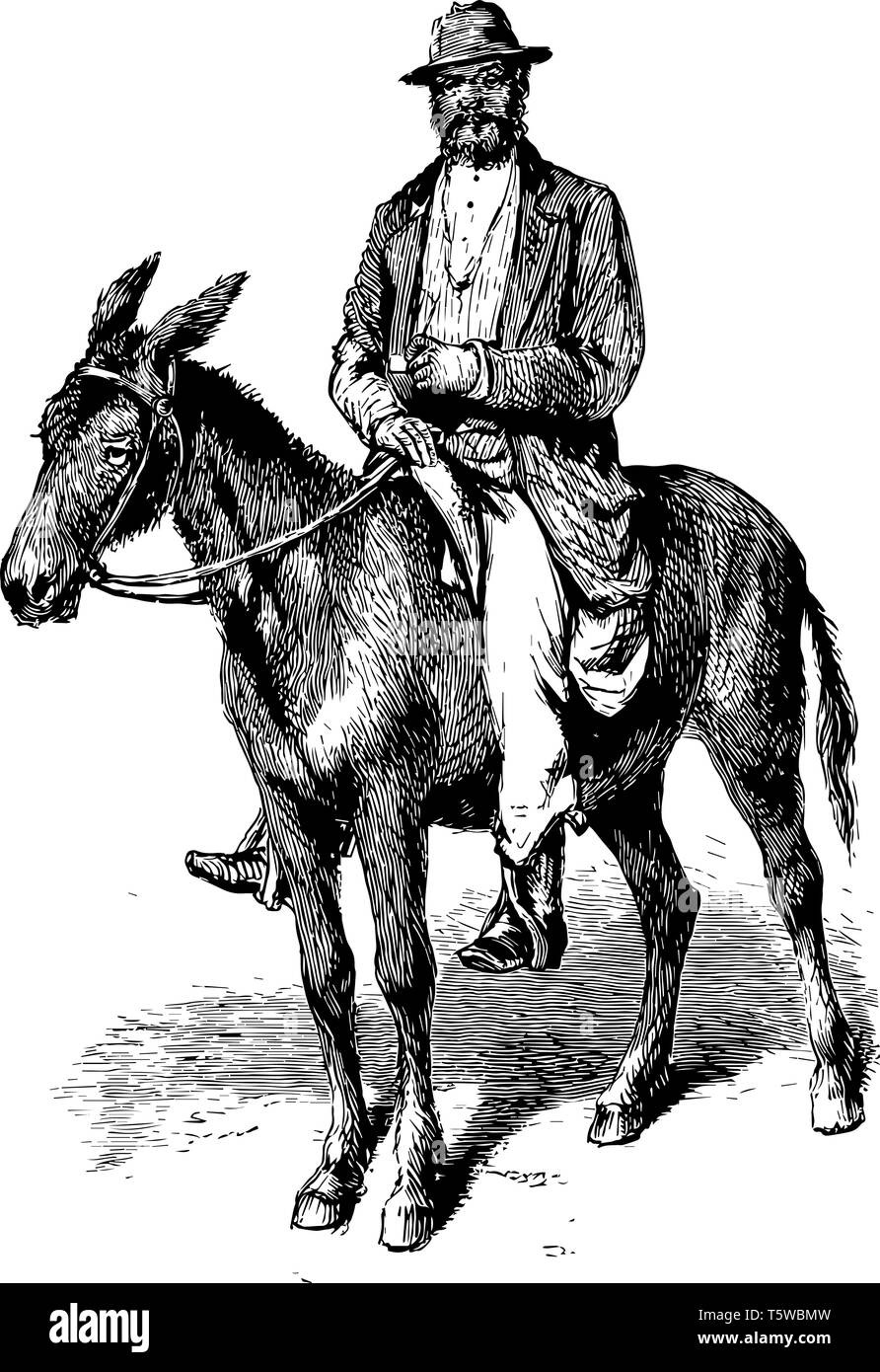 A Man Riding On Horse Vintage Line Drawing Or Engraving Illustration Stock Vector Image Art Alamy
