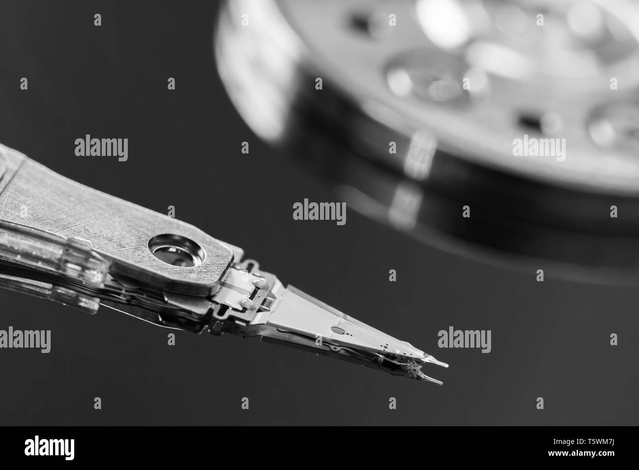 Macro black & white image of the actuator arm and read / write head reading and writing data from and to a computer hard disk drive (HDD) platter. B&W - Stock Image