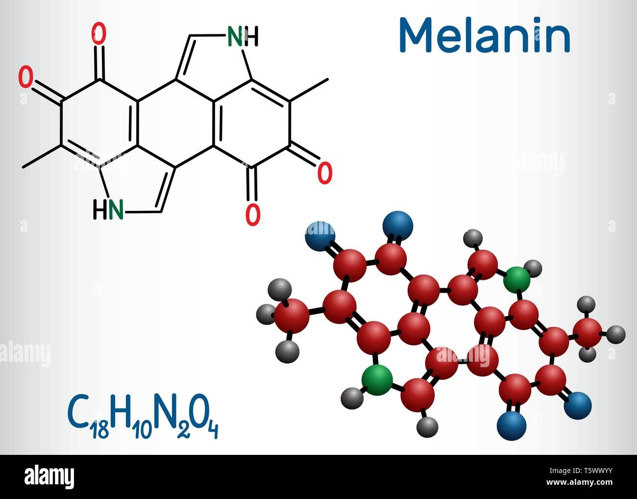 Melanin  molecule. Structural chemical formula and molecule model. Vector illustration Stock Vector