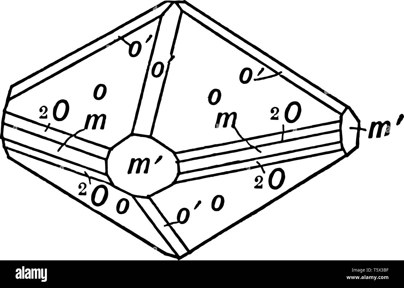 this diagram represents boron vintage line drawing or engraving  illustration
